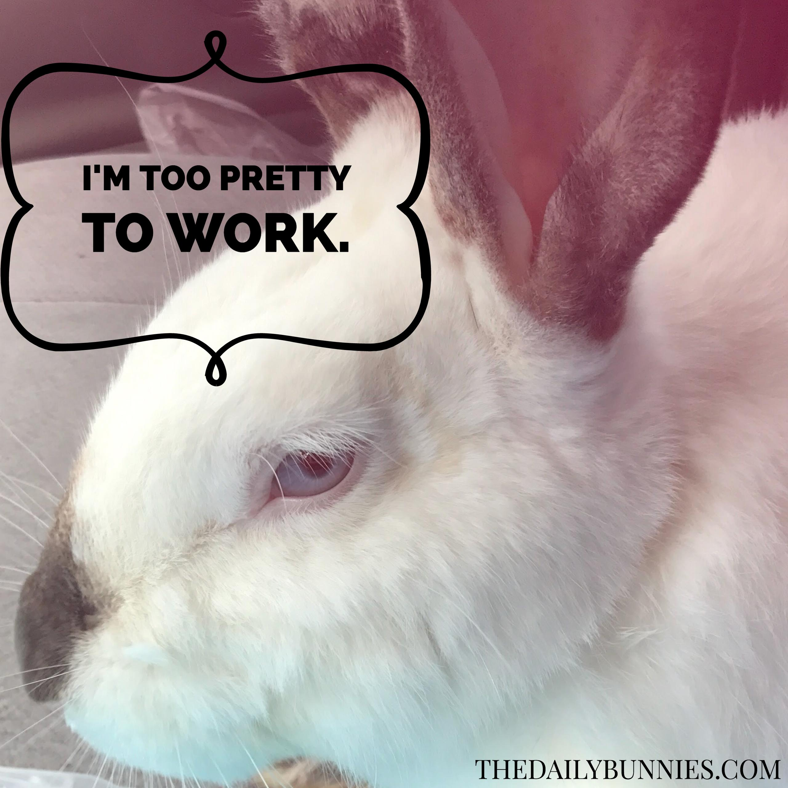 I'm too pretty to work!